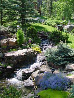 Decorative Rocks Ideas : Description Colorado Alpines & Wildflower Farm created this unique water feature. Pond Landscaping, Landscaping With Rocks, Landscape Design, Garden Design, Alpine Garden, Backyard Water Feature, Paludarium, Gras, Fauna