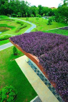 PurpleHeart, enmasse Pasir Ris Park