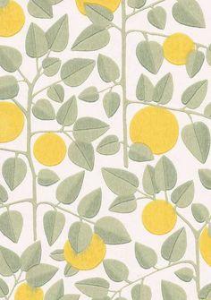 Pihlgren ja Ritola / Appelsiini
