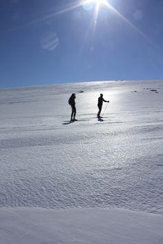 Nordic Skiing and sun