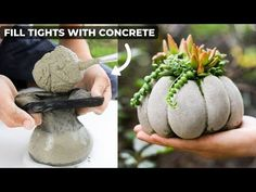 The concrete succulent pumpkin planters are so easy to make! Fill tights with concrete and attach rubberbands! Thank plant a succulent inside! Diy Concrete Planters, Diy Planters, Succulent Planters, Garden Planters, Cement Pots, Concrete Garden, Pumpkin Planter, Diy Pumpkin, Types Of Pumpkins