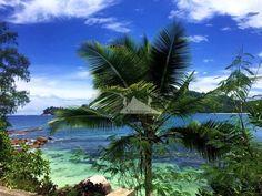 Count the colors of the sea. Seychelles has them all الألوان البحر الرائعة في السيشل  To know more about our trip to the Seychelles check the blog لمعرفة المزيد عن رحلتنا إلى جزر السيشيل  يمكنك قراءة المدونة على الرابط  http://www.easttowestadventures.com/en/seychelles-tropical/ #easttowestadventures #travelblogger  #travelphotographer #seychelles #honeymoon #beach #beachholiday #victoriacity #africa #blogger #paradise #holidayfactory #holidayfactoryuae #bestbeaches #whitesands