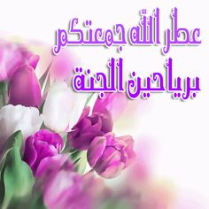 Islamic Images, Islamic Pictures, Wonderful Flowers, Beautiful Roses, Bisous Gif, What Is Islam, Mecca Wallpaper, Jumma Mubarak Images, Blessed Friday