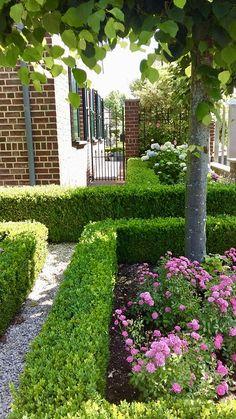 Garden Cottage, Outdoor Living, Outdoor Decor, My Secret Garden, Run Around, Garden Inspiration, Backyard Landscaping, Curb Appeal, Stepping Stones