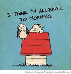 blog about life with an invisible illness, chronic fatigue, fibromyalgia, anemic, hashimoto's thyroid, endometriosis, neuropathic pain, etc.