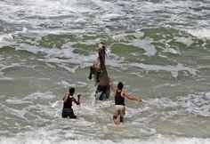 Dois palestinos foram fotografados nesta terça-feira (28) lavando um cavalo na praia na Cidade de Gaza.  (Foto: Mohammed Abed/AFP)
