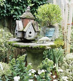 Birdhouse, pigeon, topiary in blue pot on large wood spool