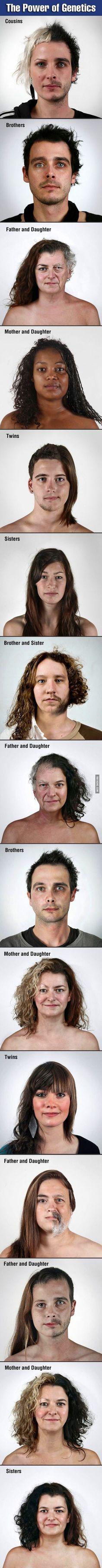 The do look alike a little