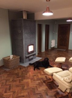 TU2700/4 TOP: Customised with an additional course of soapstone. This dog is certainly enjoying the radiant heat!