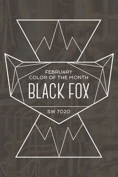 Color of the MonthFebruary's Color of the Month, Black Fox (SW 7020), has just enough edge to break the ice. Make your stylish statement with this black backdrop.
