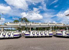 https://flic.kr/p/tHZC1q | Monorail v Tram