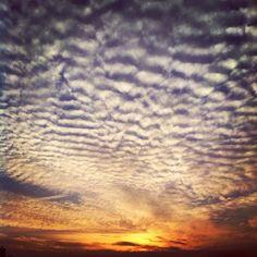 Marcel Tettero @marcel_tettero Instagram photos   Websta