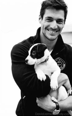 Jack Russell Terrier & David Gandy- I'll take both!.. This is for Nicole ;)