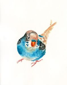 PARAKEET by DIMDI Original watercolor painting by dimdi on Etsy