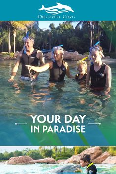 With limited availability each day, you get more time with the Stingrays for a once-in-a-lifetime experience! Book your trip to Discovery Cove - the best part of your Florida vacation! Girls Vacation, Florida Vacation, Vacation Trips, Vacation Spots, Vacation Packages, Canada Destinations, Honeymoon Destinations, Best Places To Travel, Places To See