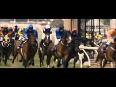 Horse Racing Tribute