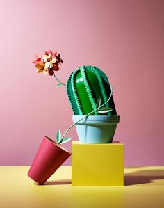 Bizarrely surreal still-life photography. Victoria Ling