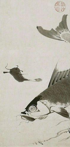鯉鯰図 Carp and Catfish 伊藤若冲 ITO Jakuchu