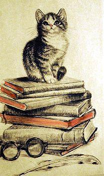 Awww mi vida los gatos y leer! Illustrations, Illustration Art, Cat Reading, Gatos Cats, Animal Books, Cat Wallpaper, Oeuvre D'art, Crazy Cats, Cool Cats
