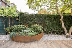 The beach garden - inspiration and ideas - renovation - home and garden Sour Love Garden, Dream Garden, Home And Garden, Beach Gardens, Outdoor Gardens, Courtyard Gardens, Bungalow, Garden Architecture, Garden Planning