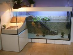 Turtle tank to the floor with attached dry part, cool idea!