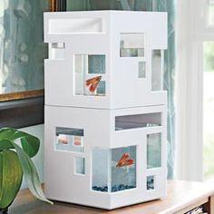 Tanque de peixes parece um condomínio elegante.    Moda para casa ou escritório, o Hotel Peixe apresenta janelas assimétricas que lhe dão um olhar contemporâneo. Empilhável-comprar dois para o impacto duplo