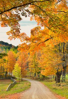 Vermont Fall Foliage 2013 by willsdad48 on Flickr.