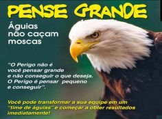 Nutrition To Fight Cancer Eagle Eye, Bald Eagle, Smart Art, Herbalife Nutrition, Motivational Phrases, Daily Motivation, Inspiration, Lira, Agaves