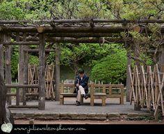 Japanese arbour