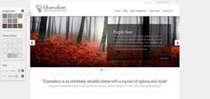 Chameleon Design- click on photo for full demo