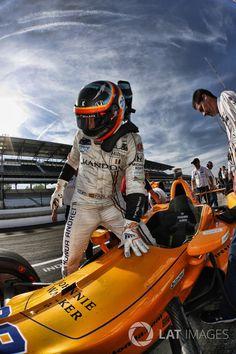 Fernando Alonso, Andretti Autosport Honda at Indy 500