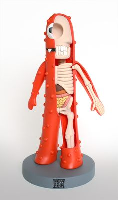 Character Anatomy Sculptures by Jason Freeny
