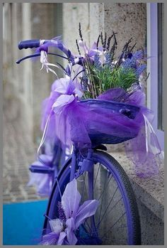 Crazy awesome purple and blue bicycle, basket, and flowers!