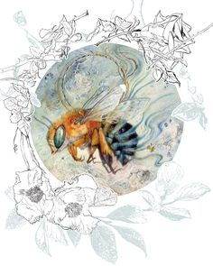 """Trailing Blue"" from Descants & Cadences - new art book featuring Stephanie Law. Art And Illustration, Illustrations, Watercolor Illustration, Watercolor Paintings, Watercolor And Ink, Watercolours, Books Art, Gold Leaf Art, Bee Art"