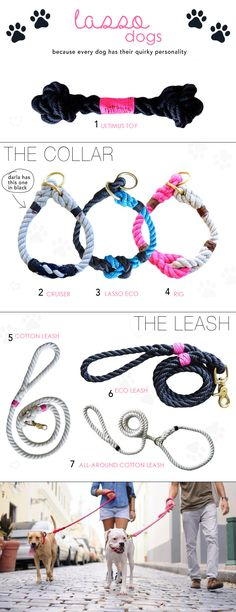 Doggies: lasso dogs - these are so cute...not that I have a dog but I love 'em