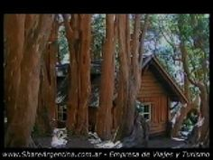 Patagonia Argentina: Isla Victoria, Lago Nahuel Huapi y Bosque de Arrayanes