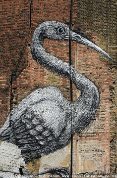 Street Artist: ROA, East London