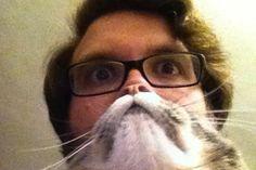 Hilarious Pet Owners Take Photos with Cat Beards - My Modern Metropolis