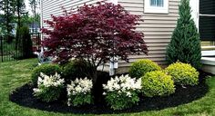 outstanding 45 Stunning Front Yard Landscaping Ideas on A Budget https://homedecort.com/2017/08/45-stunning-front-yard-landscaping-ideas-budget/
