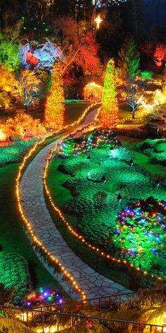 Christmas in butchart gardens, Victoria, British Columbia, Canada