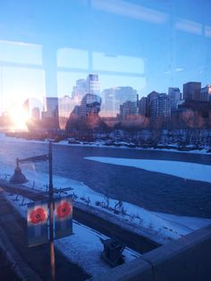 Day 20 - The train stopped on a bridge over the Bow River as I was leaving the downtown core.