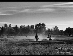 Sofi patalano fotografía