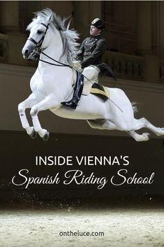 Inside Vienna's Spanish Riding School – Europe's oldest and best-known riding school, Austria