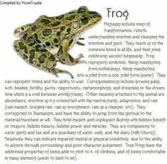 Wow.. and I just recently had a frog come to me as a spirit animal.