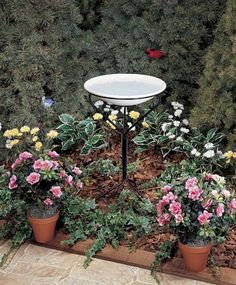Special Offers - New Allied Precision 20 In. Non-heated Bird Bath W/Metal Stand 150 Watts High Quality Modern Design - In stock & Free Shipping. You can save more money! Check It (September 04 2016 at 04:30AM) >> http://birdhouseusa.net/new-allied-precision-20-in-non-heated-bird-bath-wmetal-stand-150-watts-high-quality-modern-design/