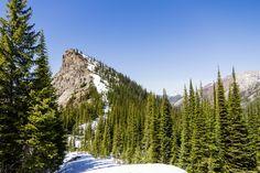 6 Day Hikes in Fernie, BC. Photo by Dan Kilgallon. Alpine Meadow, Day Hike, Outdoor Recreation, Banff, Adventure Awaits, Trail, Hiking, Canada, Outdoors