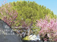 Fotografie mit Spruch Inspirierende Kunst von LindasSmile auf Etsy