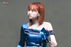Yuri, Secret Song, Sakura Miyawaki, Current Mood Meme, Japanese Girl Group, Beautiful Fairies, Famous Girls, Cute Memes, Extended Play