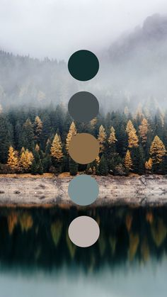 Brand color palette inspiration designed by Amari Creative, branding and design . Palettes Color, Colour Pallette, Colour Schemes, Color Combos, Coastal Color Palettes, Interior Color Schemes, Room Colors, House Colors, Graphisches Design