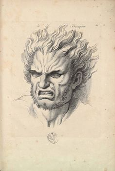 """Charles Le Brun   """"Expressions des passions de l'âme""""  1727    XX. Le désespoir."""